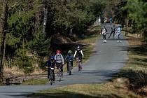 V Hradci Králové s teplým počasím vyrazily stovky lidí do městských lesů za sportem - a to jak s rouškou, tak i bez ní.