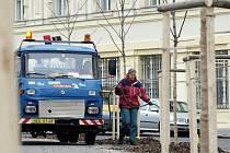 Zaměstnanci Technických služeb města Hradce Králové musejí kvůli dlouho trvajícímu suchu zalévat stromy.