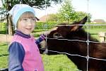 Děti z Heřmánku v zooparku ve Stěžerách.