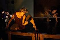 Taneční divadlo Honzy Pokusila
