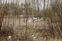 V místech, kde má vyrůst nová zóna, je nyní malý lesík a o to větší nepořádek.