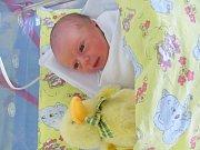 VERONIKA KAPLANOVÁ se narodila 19. února v 6 hodin ráno. Měřila 48 cm a vážila 2930 g. Svým příchodem na svět udělala radost rodičům Miroslavě a Vlastimilovi Kaplanovým z Rosnic.