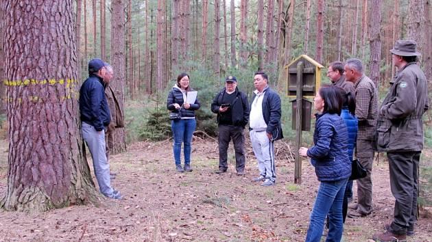 Mongolská delegace v Městských lesích Hradec Králové.