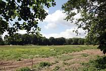 Na zelené louce v blízkosti malšovického stadino vyroste dlouho očekávané hradecké koupaliště za 354 milionů korun. Stavba by měla začít 3. června a potrvá nejdéle 28 týdnů.
