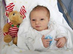 Anna Bittnerová se narodila 27. listopadu v 17.46 hodin. Měřila 55 centimetrů a vážila 3740 gramů. Společně s rodiči Kateřinou a Zdeňkem Bittnerovými bydlí v Pohřebačce.