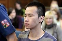 Z těžkého ublížení na zdraví se zpovídá u Krajského soudu v Hradci Králové Vietnamec Tien Dung Nguyen.