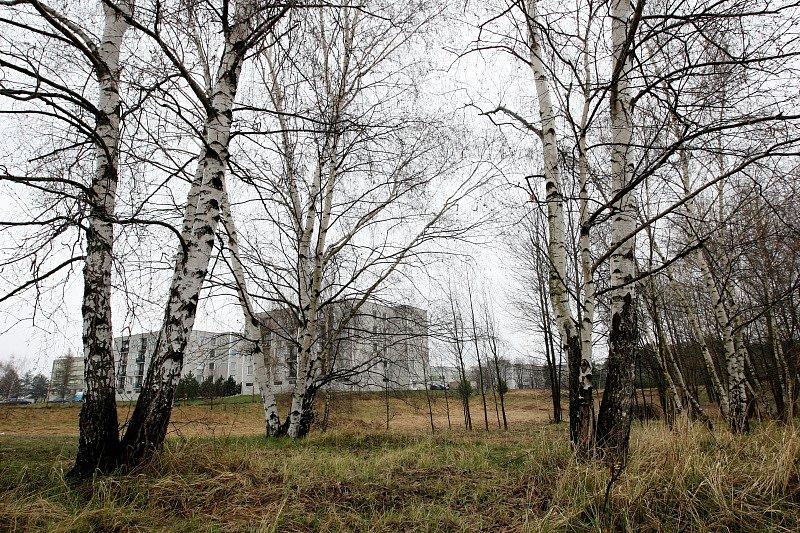 V těsné blízkosti obytné části v Březhradě na královehradecku, chce firma ThyssenKrupp Ferrosta s.r.o. vybudovat obří sklady. Obyvatelé Březhradu jsou proti výstavbě.