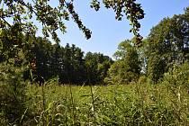 Přírodní památka Roudnička a Datlík