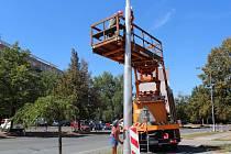 Stožáry pro novou trolejbusovou linku již stojí v ulici Milady Horákové. Na sloupy se umístí i veřejné osvětlení.