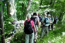 Přírodovědná exkurze do Babiččina údolí.