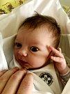 ADÉLKA ŠULCOVÁ se narodila 22. 3. 2018 v hradecké fakultní nemocnici s váhou 3760 g a délkou 52 cm. Tatínek Milan Šulc byl velkou mamince Tereze Šulcové oporou, ale i tak musela Adélka nakonec na svět přijít císařským řezem.
