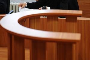 Jednapadesátiletého Vlka poslal jihlavský soud na čtrnáct měsíců do vězení už letos v únoru a v úterý 4. května mu trest potvrdil i Krajský soud v Brně. Ilustrační foto