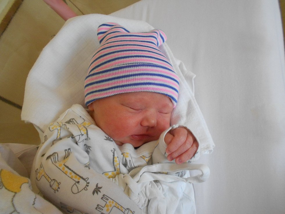 Vendula Čepelková se narodila 28. 4. 2021 v9:25 hodin. Vážila 3 300 g a měřila 50 cm. Rodiče Petra Březinová a Václav Čepelka pochází zČastolovic. Tatínek byl u porodu a zvládl to výborně.