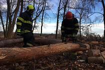 Dobrovolní hasiči z Třebše pomáhali v dětském centru.