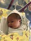 AMÁLIE MIA poprvé spatřila světlo světa 2. ledna. Po narození měřila 50 cm a vážila 3510 g. Doma v Hradci Králové se na ní velmi těší bráškové Adam a Alexandr.