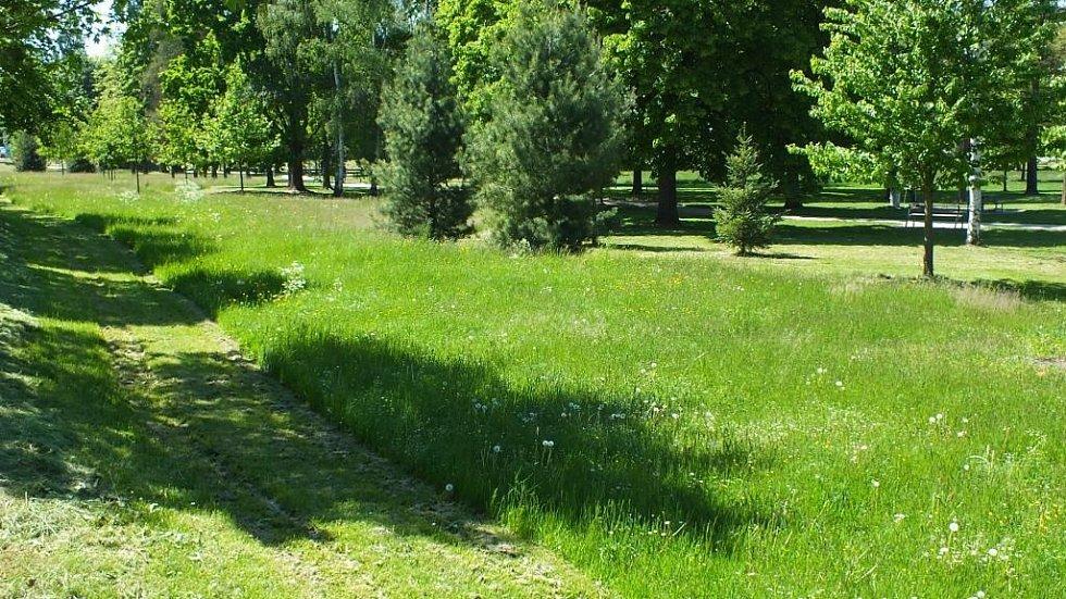 Mozaika z travnatých ploch. Ilustrační foto.
