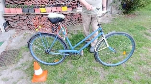 Cyklistka s bicyklem po kolizi se psem.