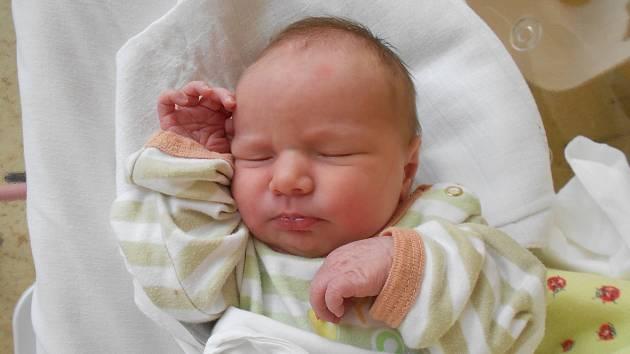 APOLENA MAZUROVÁ se narodila 28. sprna v 16.27 hodin. Měřila 49 cm a vážila 3300 g. Radost udělala svým rodičům Tereze a Tomáši ze Slatiny nad Zdobnicí. Doma se těší sourozenci Robin a Amálka.