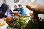 Výstava s názvem Houby živé, jedlé i jedovaté v královéhradeckém Muzeu východních Čech.