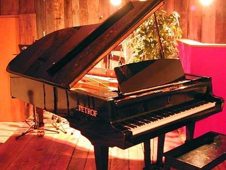 Piana Petrof: Kvalita a tradice