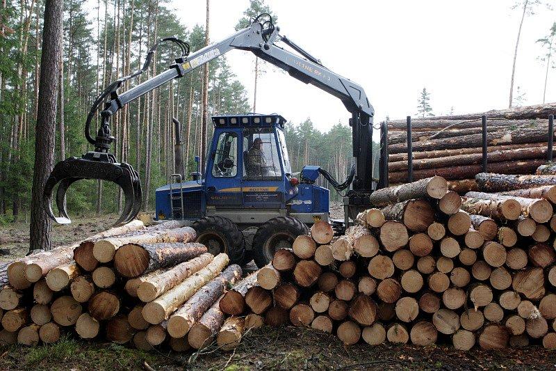 Během dubna se v Městských lesích Hradec Králové mohli lidé setkat s obřími harvestory při těžbě dřeva.