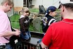 Zoo ve Dvoře Králové nad Labem