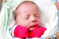 Jonáš Picka se narodil 28. ledna v 11.08 hodin. Měřil 49 centimetrů a vážil 3050 gramů. Společně s bráškou Kryštofem, maminkou Andreou a tatínkem Štěpánem Pickovými bydlí v Hradci Králové.