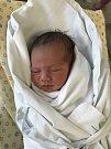 VANESKA ŠIROKÁ se narodila 9. července v 6.18 hodin. Měřila 50 cm a vážila 3250 g. Svým příchodem na svět potěšila své rodiče Martinu a Michala Široké z Hradce Králové.