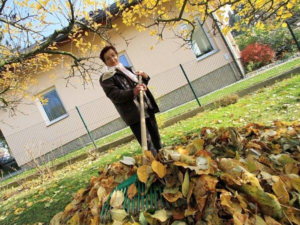 Hrabání listí. Ilustrační fotografie.