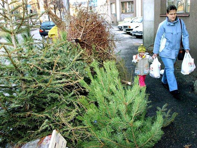 Vánoční stromky přišly o své ozdoby a z obýváků se přestěhovaly k popelnicím.