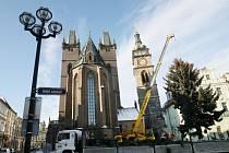 Usazování vánočního stromu města Hradce Králové na Velkém náměstí