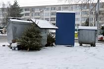 Vyhozený vánoční stromeček.