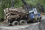Odvoz dřeva napadeného kůrovcem - ilustrační foto.