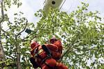 Zkouška záchranářů nanečisto: V závěsu na laně se snažil speciální tým šesti hasičů pomoci paraglidistovi zaklíněnému v koruně stromu.