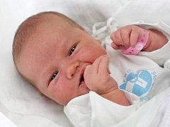 Lucie Palinová se narodila  20. července v 16.12 hodin. Měřila 49 centimetrů a vážila 3483 gramů. S maminkou Lenkou Seidlovou, tatínkem Radkem Palinou a bratrem Jakubem žije v Osicích.