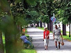Stromořadí a středový chodník v královéhradecké ulici V Lipkách čeká proměna. Chodník dostane nový povrch a bude sloužit i cyklistům, většinu starých stromů nahradí mladé lípy.