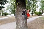 Výstava na stromech: Poznej své boty.