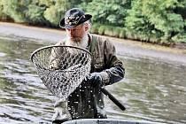 Výlov ryb z rybníku Výskyt. Rybáři měli o práci postaráno.