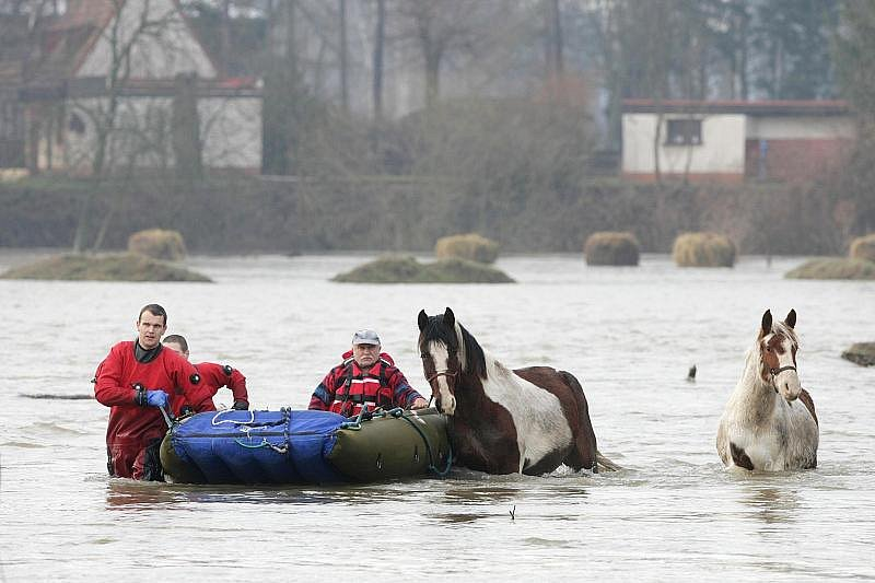 Voda zaplavila louku v Blešně, hasiči zachránili osm koní.