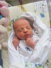KLÁRA PECHÁČKOVÁ se narodila 20. ledna v 10.07 hodin. Vážila 2930 g a měřila 49 cm. Velkou radost udělala rodičům Renátě Pavlů a Milanu Pecháčkovi z Hradce Králové.