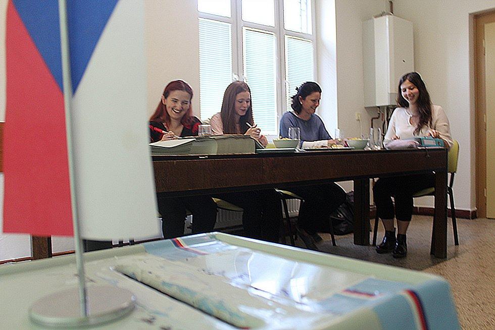 Volební komise v Třesovicích vyhodnotila volební účast jako velmi nízkou. Přišla asi pětina voličů.