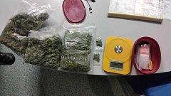 Zajištěná marihuana.