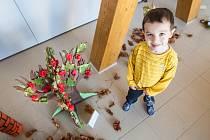 Strom života - výstava u příležitosti výtvarné soutěže v královéhradecké MŠ Podzámčí.