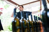 Svátek vína na soutoku v Hradci Králové.