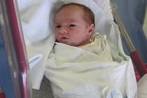 TEREZA PETRLÍKOVÁ se narodila 12. ledna v 10.31 hodin. Se svými mírami 47 centimetrů a 2930 gramů rozradostnila rodiče Lucii a Miloslava z Nerad. Doma se na ni těší sourozenci Dominik a Natálka.