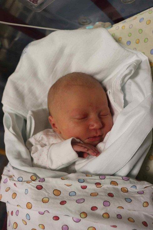 ELLIE KLIMPEROVÁ poprvé spatřila světlo světa 10. prosince ve 2.16 hodin v hradecké fakultní nemocnici. Po narození měřila 50 cm a vážila 3090 g. Největší radost udělala svým rodičům z Pardubic.