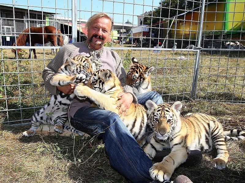Jaromír Joo s mláďaty tygrů. Cirkusový zvěřinec nabízí návštěvníkům stejně zajímavý pohled jako samotná show.