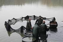 Výlov rybníka Datlík.