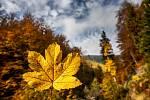 Podzim v Královéhradeckém kraji.