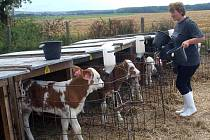 Jaký je osud zemědělců?